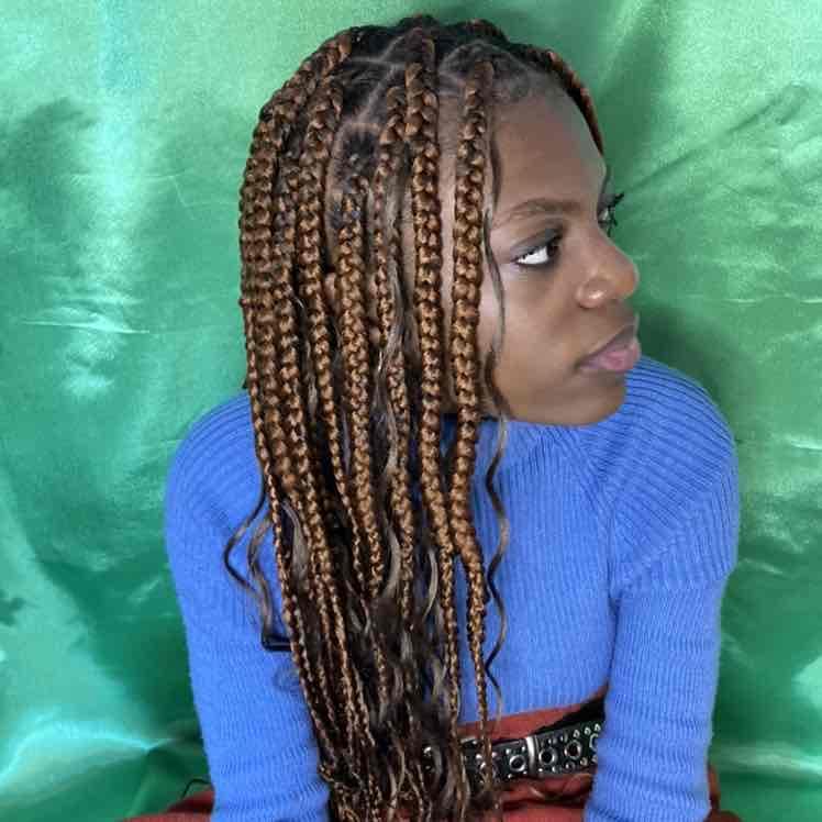 salon de coiffure afro tresse tresses box braids crochet braids vanilles tissages paris 75 77 78 91 92 93 94 95 ZHLVJKLB
