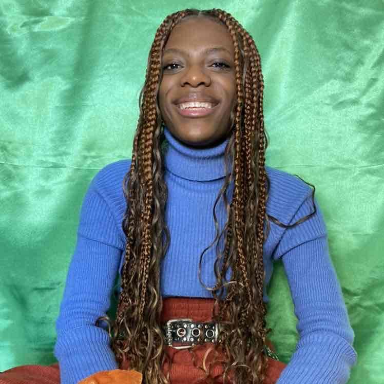 salon de coiffure afro tresse tresses box braids crochet braids vanilles tissages paris 75 77 78 91 92 93 94 95 QBFHHTKH