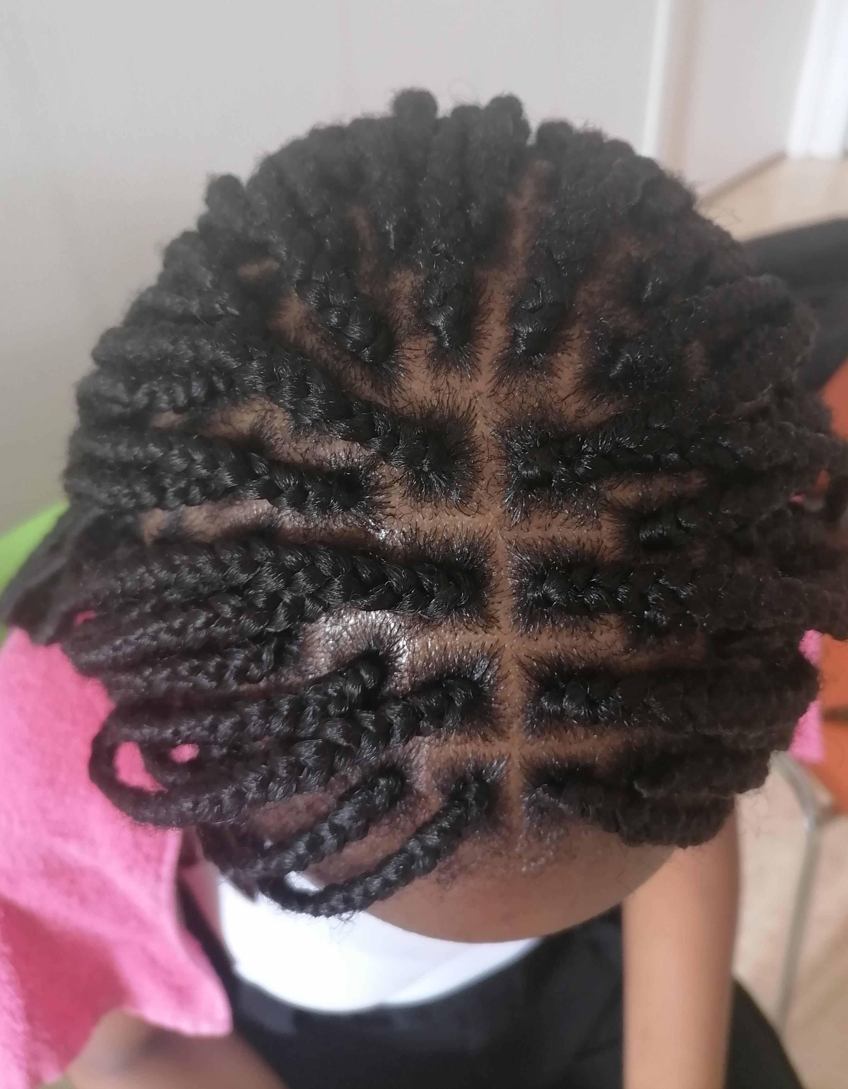 salon de coiffure afro tresse tresses box braids crochet braids vanilles tissages paris 75 77 78 91 92 93 94 95 PJYXFXRW