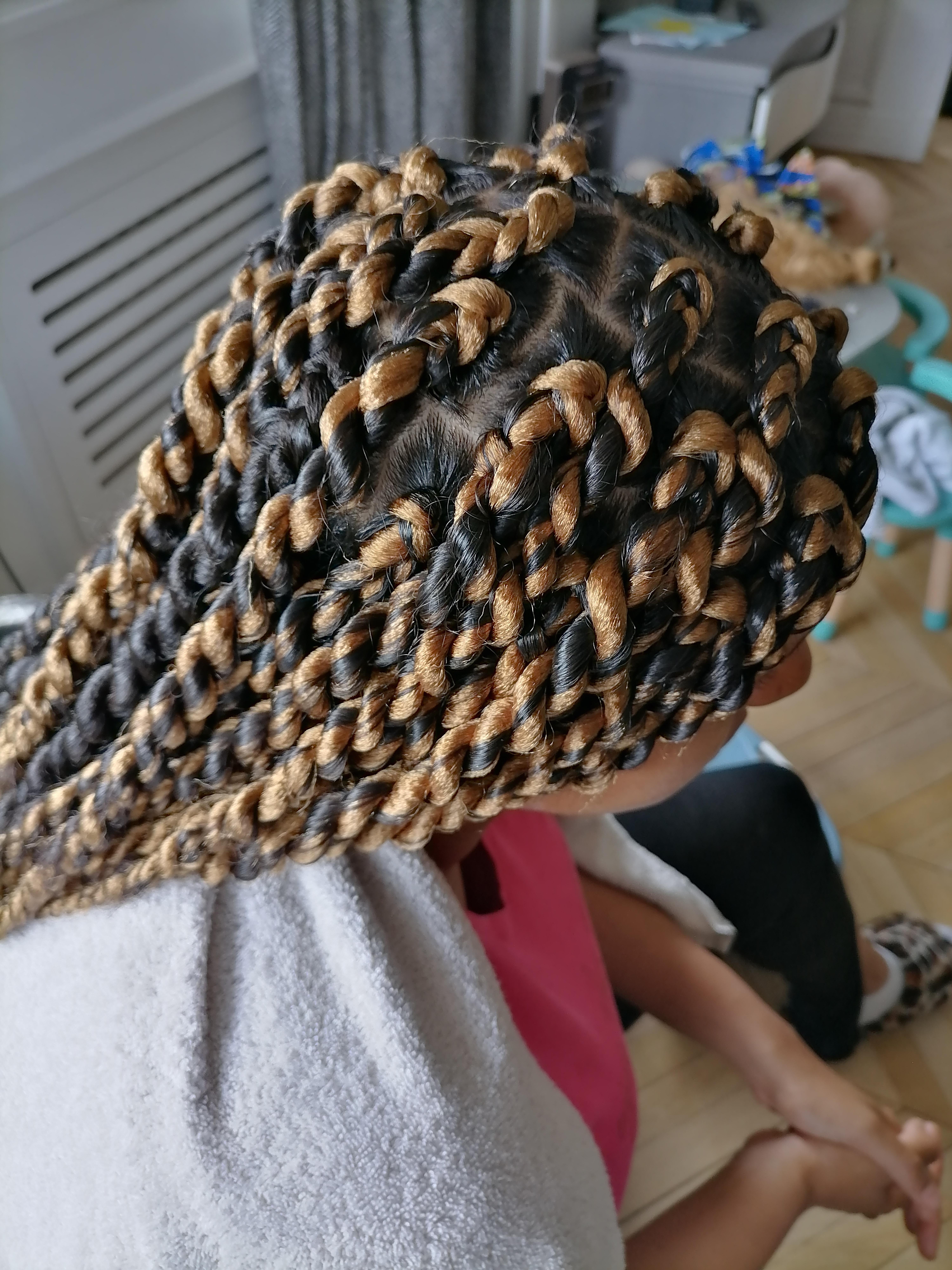 salon de coiffure afro tresse tresses box braids crochet braids vanilles tissages paris 75 77 78 91 92 93 94 95 ZSEHFHTY