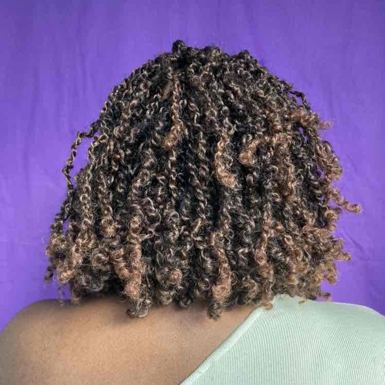 salon de coiffure afro tresse tresses box braids crochet braids vanilles tissages paris 75 77 78 91 92 93 94 95 BHVCXVJN