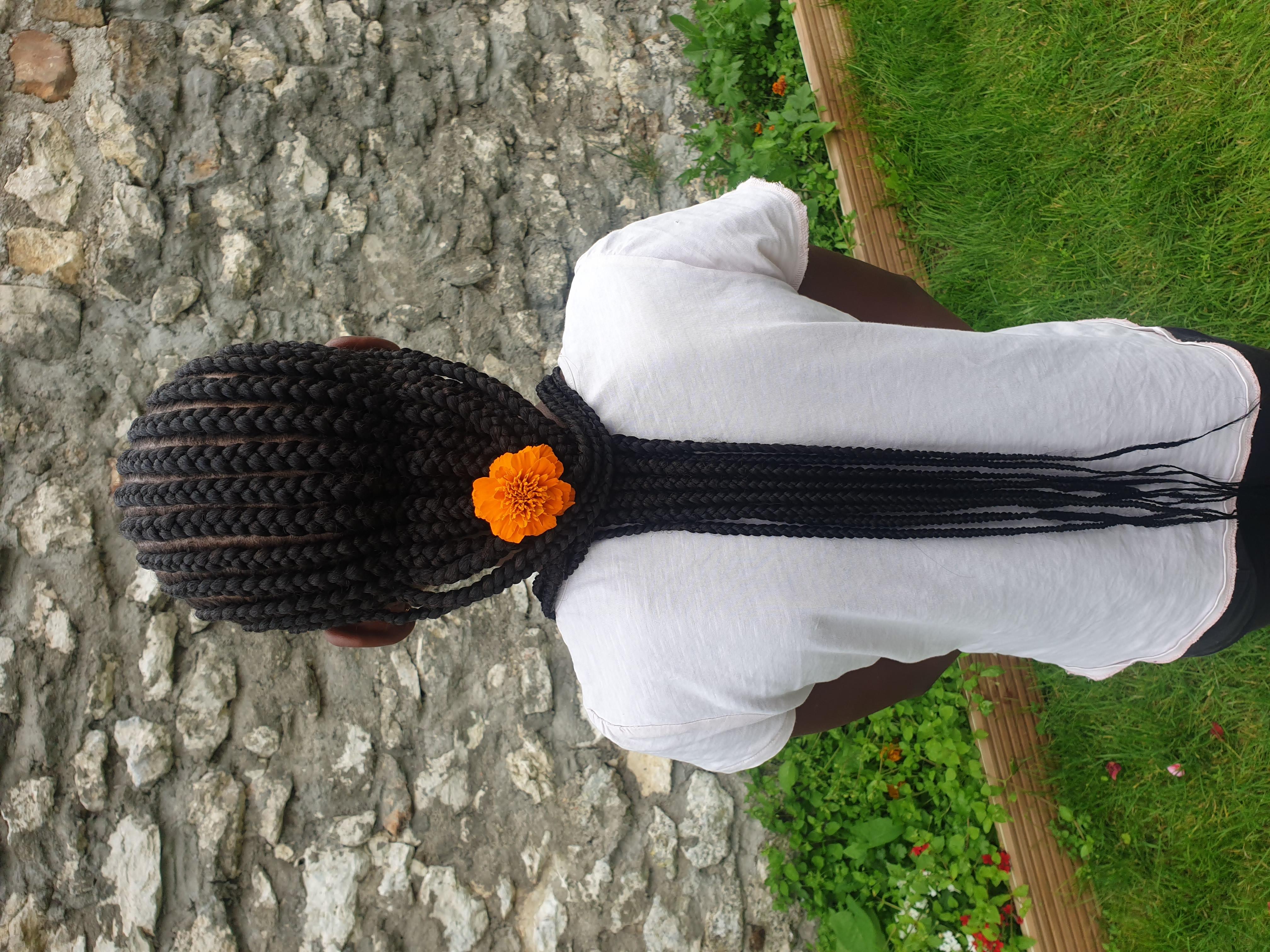 salon de coiffure afro tresse tresses box braids crochet braids vanilles tissages paris 75 77 78 91 92 93 94 95 GIQJLFUD
