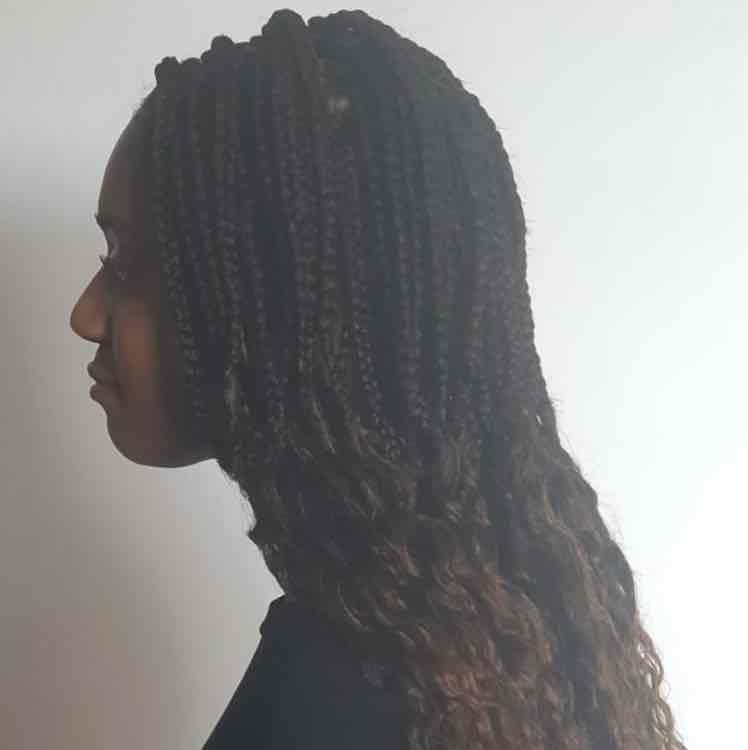 salon de coiffure afro tresse tresses box braids crochet braids vanilles tissages paris 75 77 78 91 92 93 94 95 GYDKEAVR