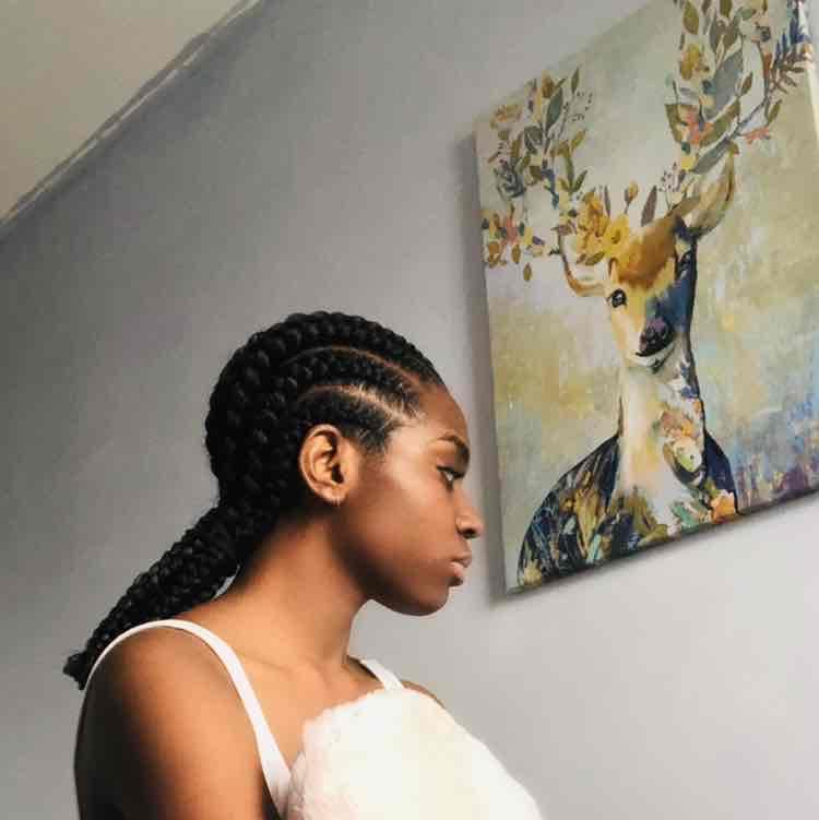 salon de coiffure afro tresse tresses box braids crochet braids vanilles tissages paris 75 77 78 91 92 93 94 95 XZDTRBDB