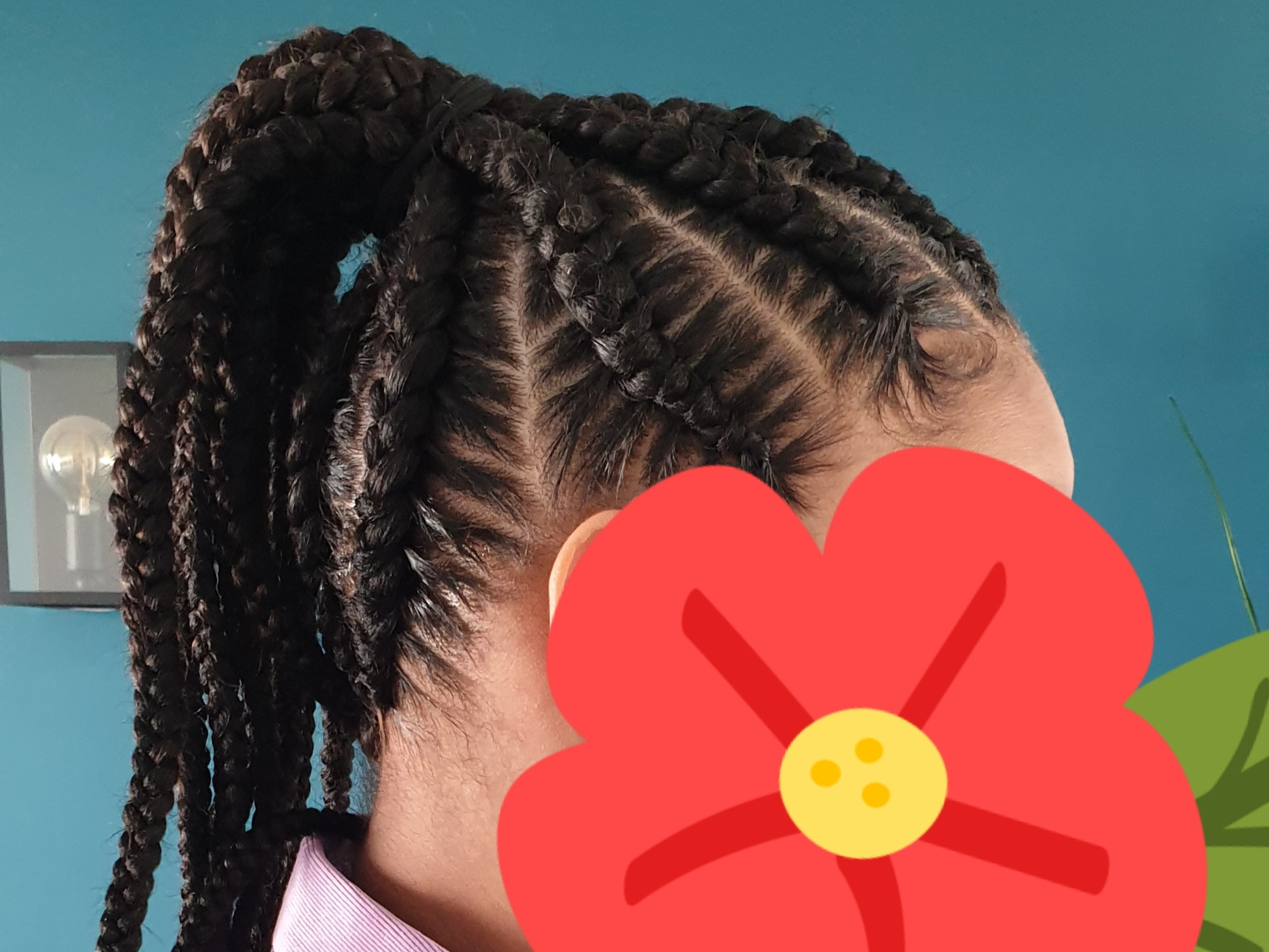 salon de coiffure afro tresse tresses box braids crochet braids vanilles tissages paris 75 77 78 91 92 93 94 95 GWJUIBKI