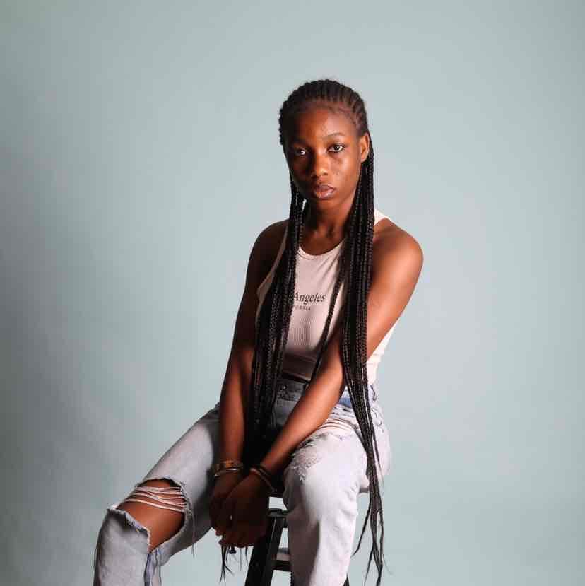 salon de coiffure afro tresse tresses box braids crochet braids vanilles tissages paris 75 77 78 91 92 93 94 95 ZYEBSAAB