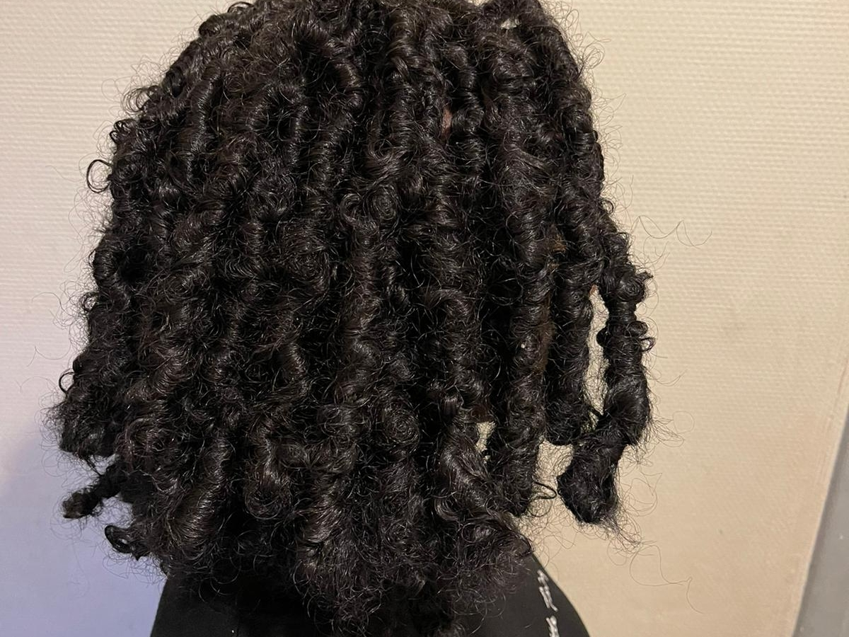 salon de coiffure afro tresse tresses box braids crochet braids vanilles tissages paris 75 77 78 91 92 93 94 95 WQTKTDZA
