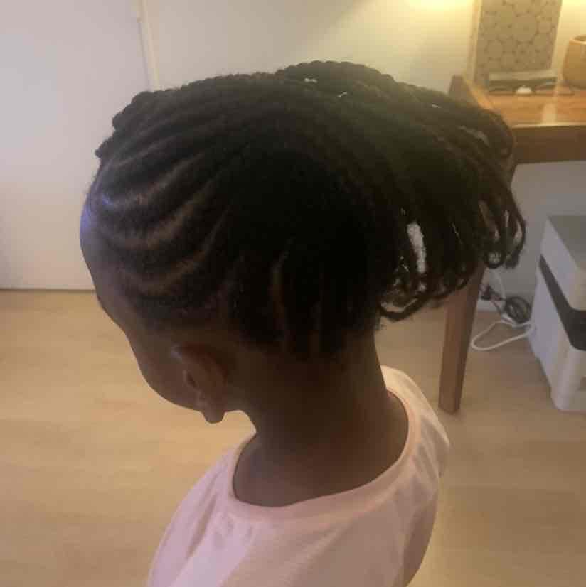salon de coiffure afro tresse tresses box braids crochet braids vanilles tissages paris 75 77 78 91 92 93 94 95 KPBYQPHX