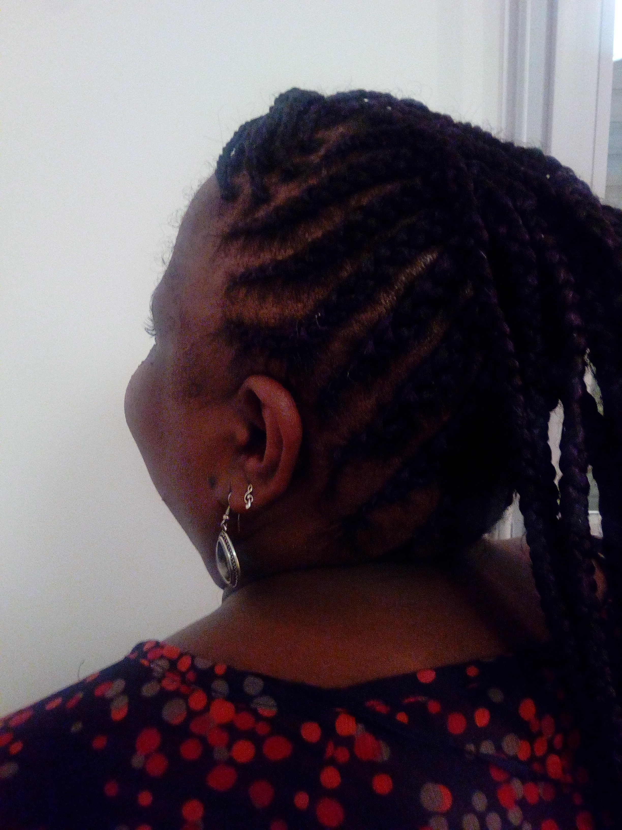 salon de coiffure afro tresse tresses box braids crochet braids vanilles tissages paris 75 77 78 91 92 93 94 95 DBPWWYYC