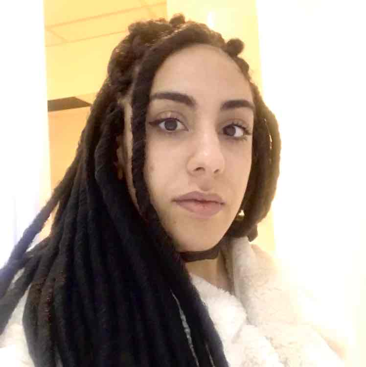 salon de coiffure afro tresse tresses box braids crochet braids vanilles tissages paris 75 77 78 91 92 93 94 95 UJDPKKCS
