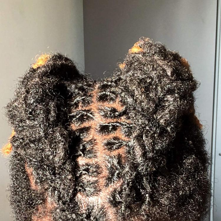 salon de coiffure afro tresse tresses box braids crochet braids vanilles tissages paris 75 77 78 91 92 93 94 95 FLWNCNSM