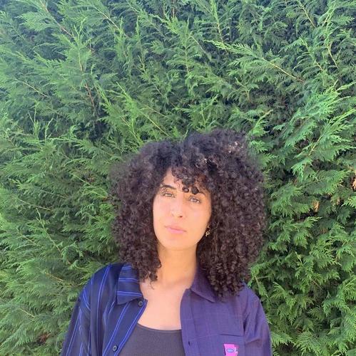 salon de coiffure afro tresse tresses box braids crochet braids vanilles tissages paris 75 77 78 91 92 93 94 95 SUHHDDRU