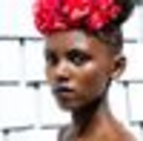 salon de coiffure afro tresse tresses box braids crochet braids vanilles tissages paris 75 77 78 91 92 93 94 95 HGMSNJGF