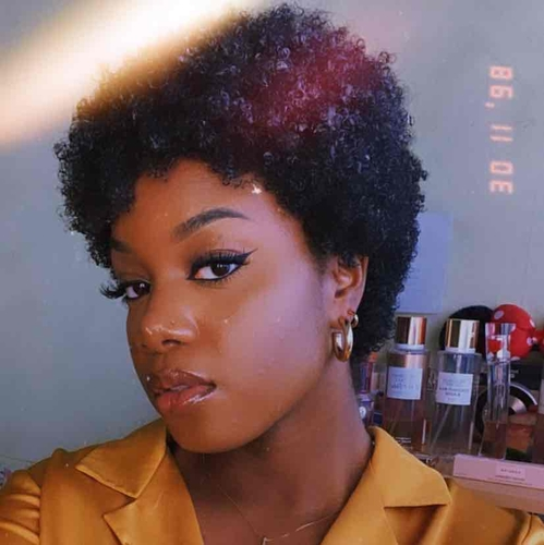 salon de coiffure afro tresse tresses box braids crochet braids vanilles tissages paris 75 77 78 91 92 93 94 95 BEIBZDUP