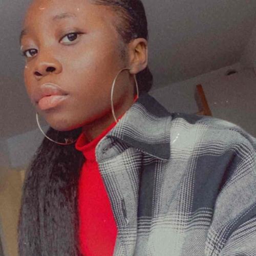 salon de coiffure afro tresse tresses box braids crochet braids vanilles tissages paris 75 77 78 91 92 93 94 95 FWIGTDWK